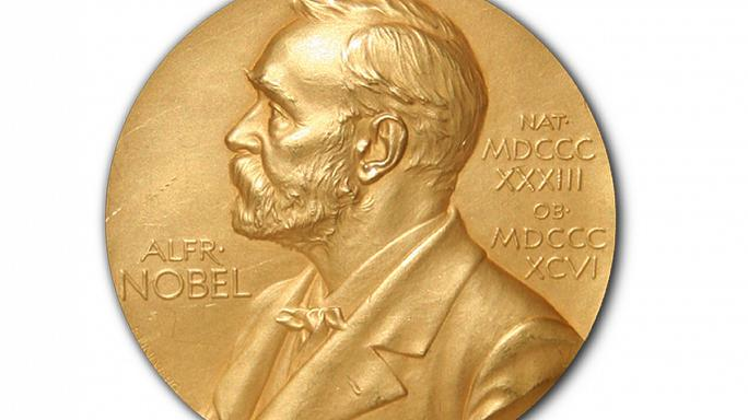Karplus, Levitt, Warshel win 2013 Nobel prize for chemistry