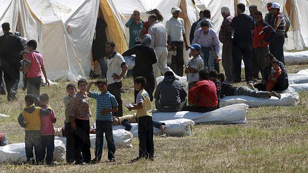 L'aumento esponenziale dei profughi siriani