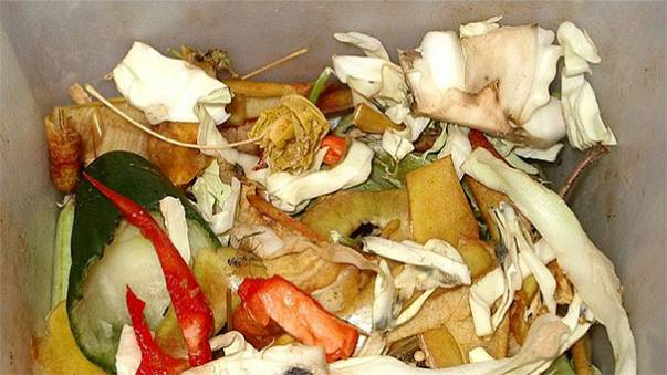 Shock as Tesco says it threw away nearly 30,000 tonnes of food in six months