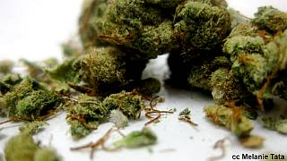 Szintetikus marihuána végzett egy 19 éves amerikai fiúval – perel az anya