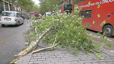 UK: the day after the storm