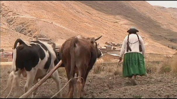 Consecuencias del deshielo de los glaciares en Bolivia