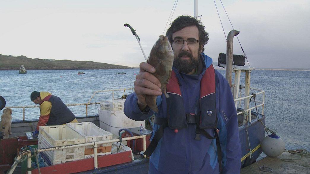 No podemos pescar, pero seguimos en el mar