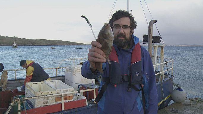 جزيرة أرانمور: القوانين الأوربية تحمي الأسماك وتضر بالصيادين