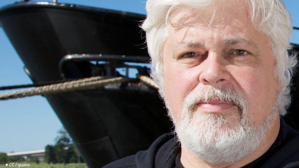 Paul Watson, le garde du corps des baleines
