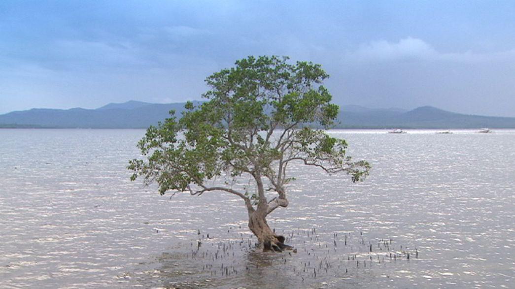 """Palawan: A entrada noutro """"planeta"""" longe da realidade"""