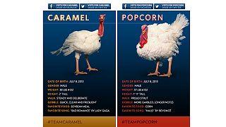 Truthahn des Jahres: Caramel oder Popcorn