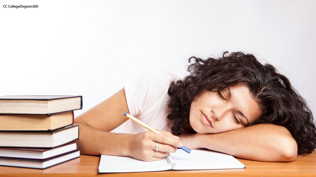 Chat: ¿Cómo poner fin al abandono escolar?
