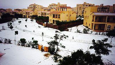 Réseaux sociaux : attention aux fausses photos de l'Egypte sous la neige