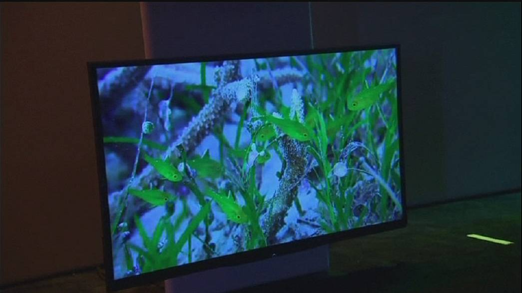 Ecrãs côncavos na feira de eletrónica de Las Vegas