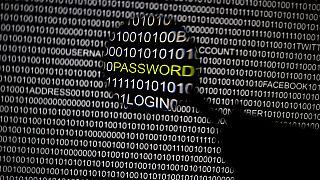 Un hollandais accusé d'avoir manipulés 400 enfants sur internet à des fins sexuelles