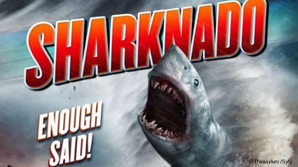 « Sharknado » élu mot le plus inutile de l'année