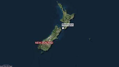Le tremblement de terre en Nouvelle-Zélande capturé en vidéo