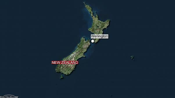 Video: central New Zealand shaken by strong earthquake