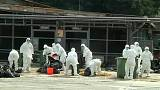 H7N9 bird flu strain kills 56-year-old man in eastern China
