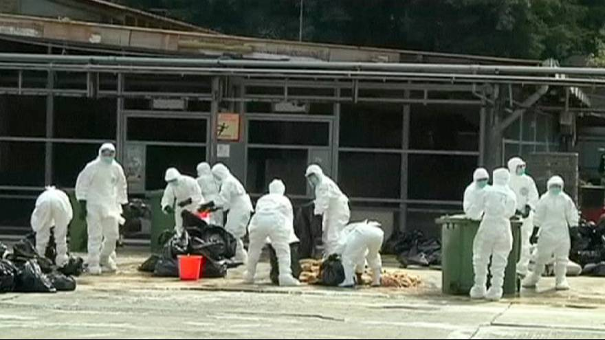 H7N9 bird flu strain kills 56-year-old man in eastern China