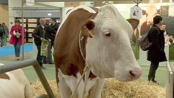 A mezőgazdaság jövője, a jövő mezőgazdasága a párizsi agrárexpón