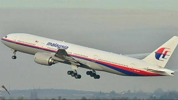 Can web users succeed where authorities have failed over missing plane?