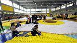 Ελλάδα: Η μεγαλύτερη κουκουβάγια του κόσμου πετάει για τα ρεκόρ Γκίνες