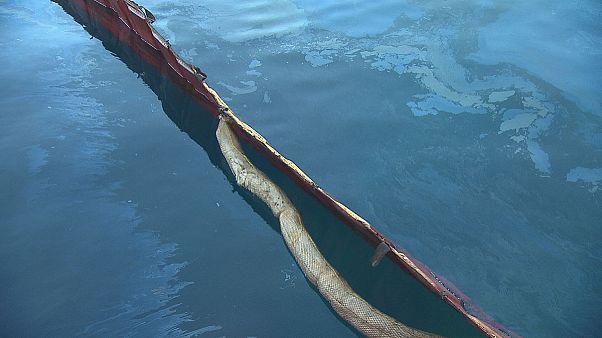 Ölkatastrophe: Mikroorganismen machen sauber