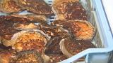 Viral attack: defenseless oysters