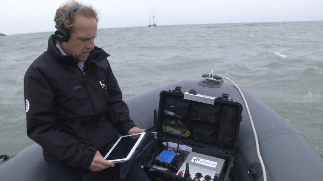 Lärmstress in den Tiefen der Ozeane
