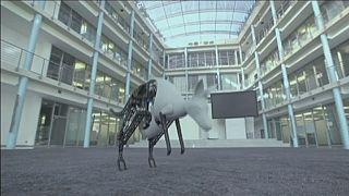 مسابقه روبات آلمانی با قهرمان پینگ پونگ