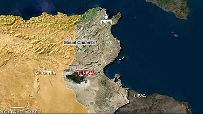 Soldier killed in mine explosion on Tunisian-Algerian border
