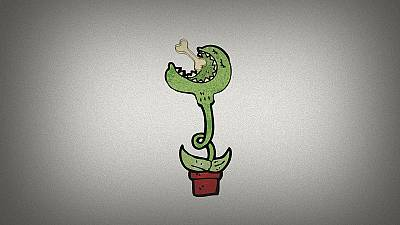 Do you know: do plants eat skeletons?