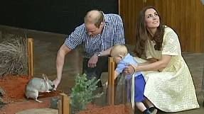 Duke and Duchess of Cambridge spend Easter Sunday at the zoo