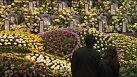 Naufragio in Corea del Sud, le scuse della Presidente Park