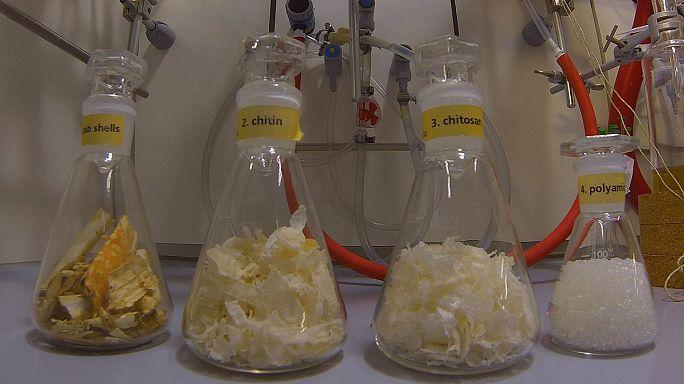 Műanyag és zöldenergia - rákpáncélból