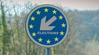 Выборы в Европарламент: Кончита зовет голосовать