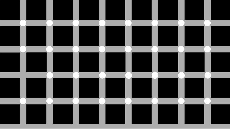 Не верь глазам своим: лучшие зрительные иллюзии