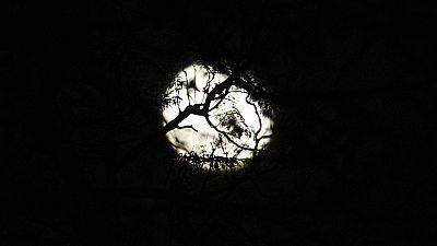 Sexta-feira 13 com lua cheia. Que sorte!