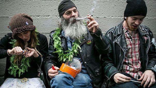 ولايتا كولورادو وواشنطن تشرعان بيع الماريجوانا