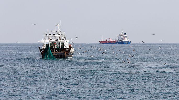 """Pêche profonde : la position de la France """"relève d'un véritable scandale"""""""