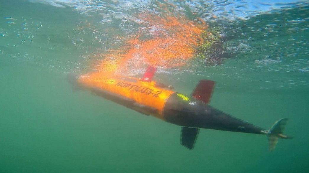 Подводные роботы объединяются в стаи