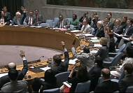 UN votes for an investigation into flight MH17
