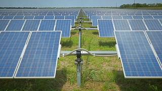 The challenge of getting renewable energy into our power networks