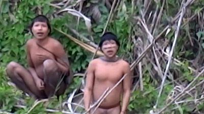 Brasile, un video mostra il primo contatto con una tribù isolata della giungla amazzonica