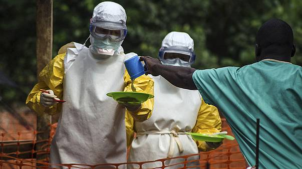 Ebola experts call for experimental drugs to be used to fight virus