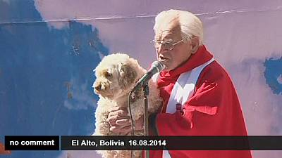 The blessing of the dogs in Bolivia – nocomment