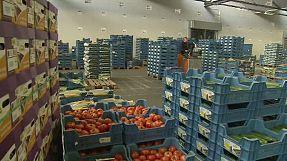 Bruselas desbloquea 125 millones de euros para los agricultores afectados por el embargo ruso
