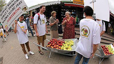 La Polonia lancia la battaglia delle mele contro l'embargo russo