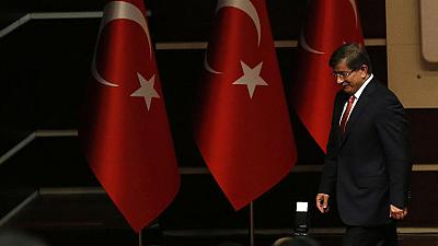 Turkey analyst: Erdogan 'seeks control' via Davutoglu appointment