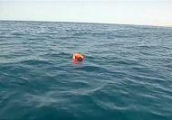 Italian navy struggles with surge in migrant shipwrecks