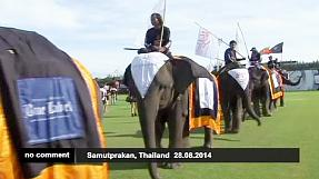 Elephant polo is the new sporting craze in Thailand