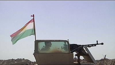 Kurds call for help to fight Islamic State in northern Iraq