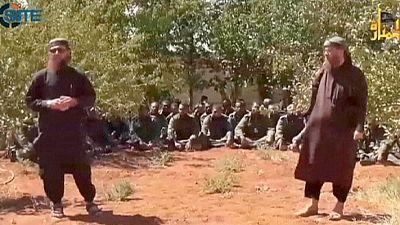 UN confirms Golan Heights Fijian peacekeepers' release